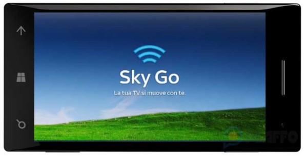 SkyGo-690x355