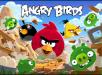 Screenshot_Angry_Birds